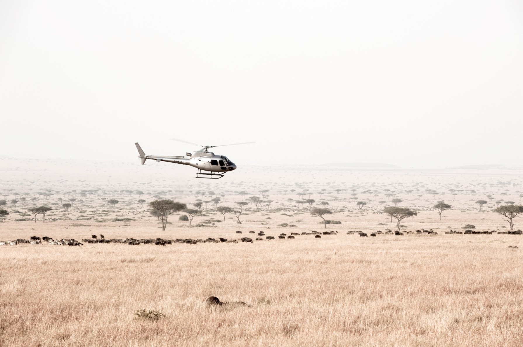 Helicopter tours kenya